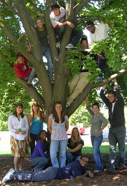 L&S Honors Fellows in tree